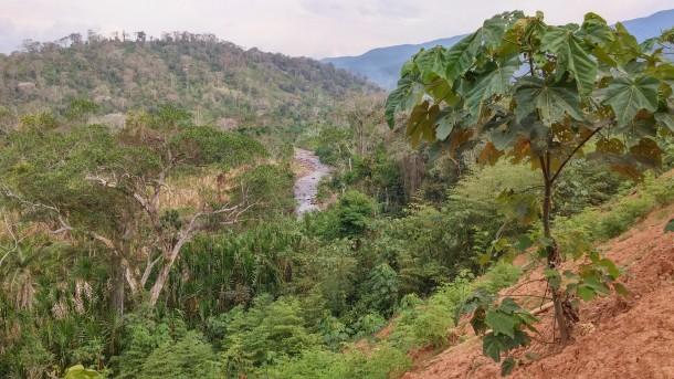 Sapecho Landschaft mit Blick auf Fluss